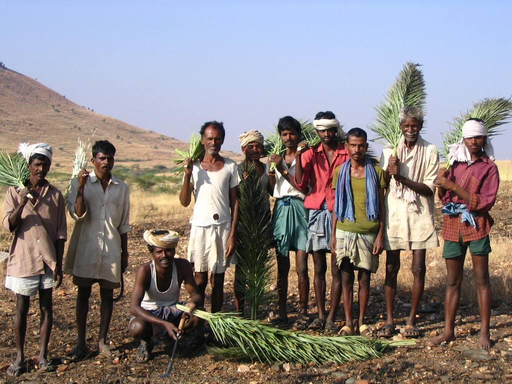 My Story: How I Paid Off My Debts And Became A Thriving Organic Farmer With Dharani