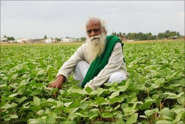 The Scientist Who Became A Saint And Started An Organic Revolution
