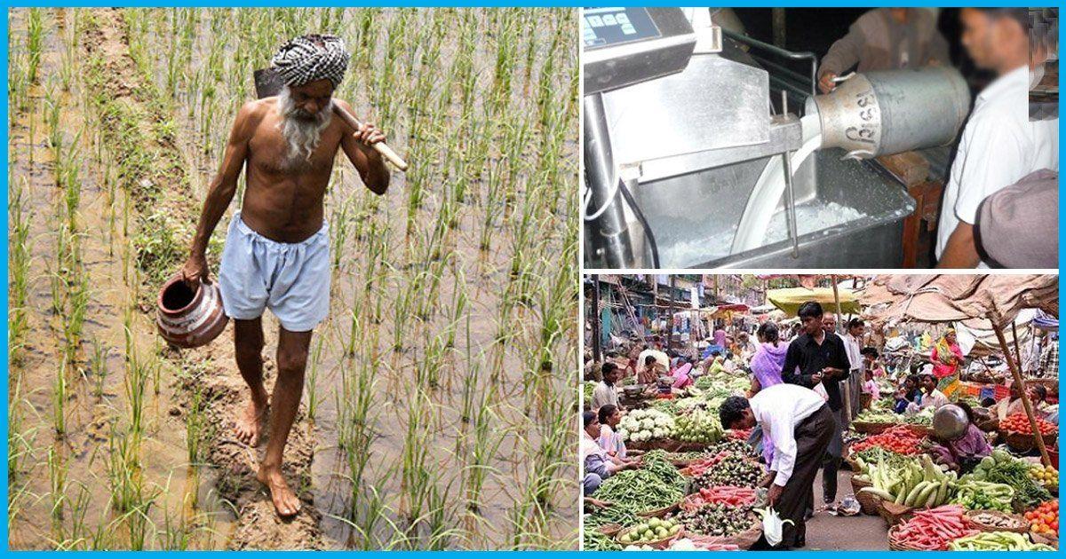 Mumbai, Pune Milk & Vegetable Supply Under Threat, Farmers Set To Go On Strike From June 1