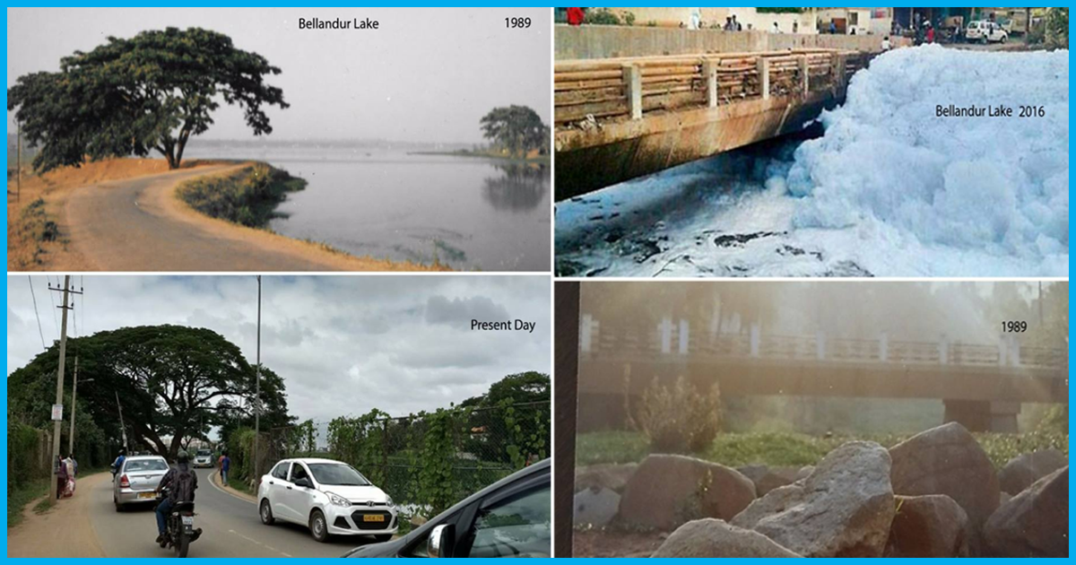 This Is How Bellandur Lake In Bengaluru Has Changed To A Drainage Swamp In The Last 20 Years
