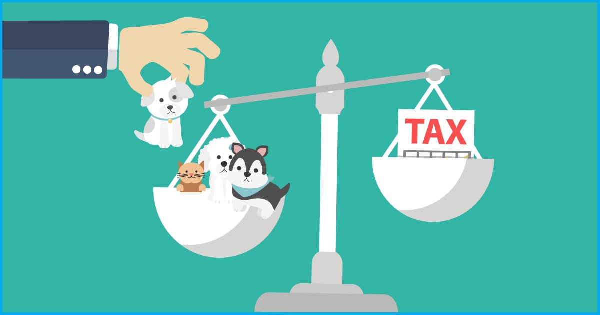 Fact Check: Is There A Tax On Keeping Pets In Punjab?