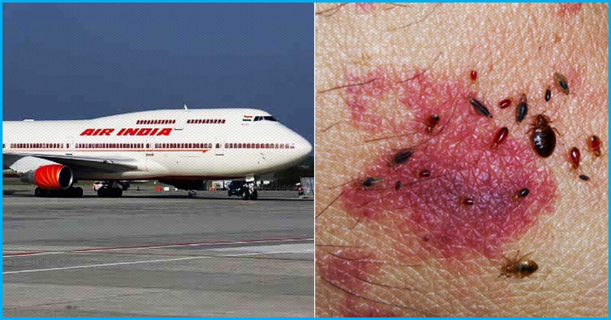 Again Bed Bugs On Air India Flight: Domestic Passenger Alleges Being Bitten On Delhi-Bengaluru Flight