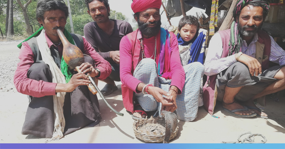 UP: In This Community Of Snake Charmers, A Woman Is Worshipped For Giving Birth To A Girl Child