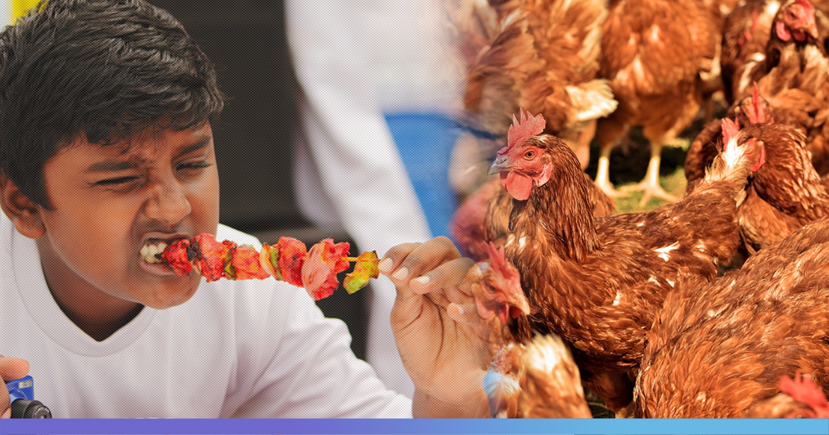 Mumbai: Eating Chicken Not Safe Any More? Study Finds Multi-Antibiotic Resistant Bacteria In Chicken Samples