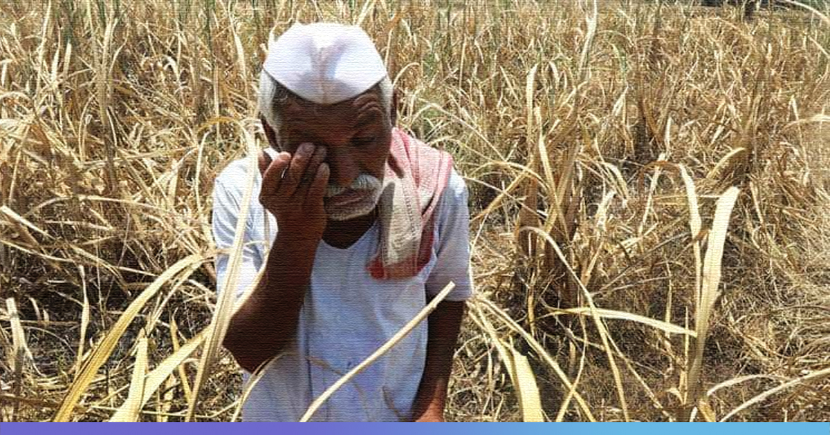 With 15,000 Farmer Suicides Every Year, Agriculture Sector Needs Govts Focus