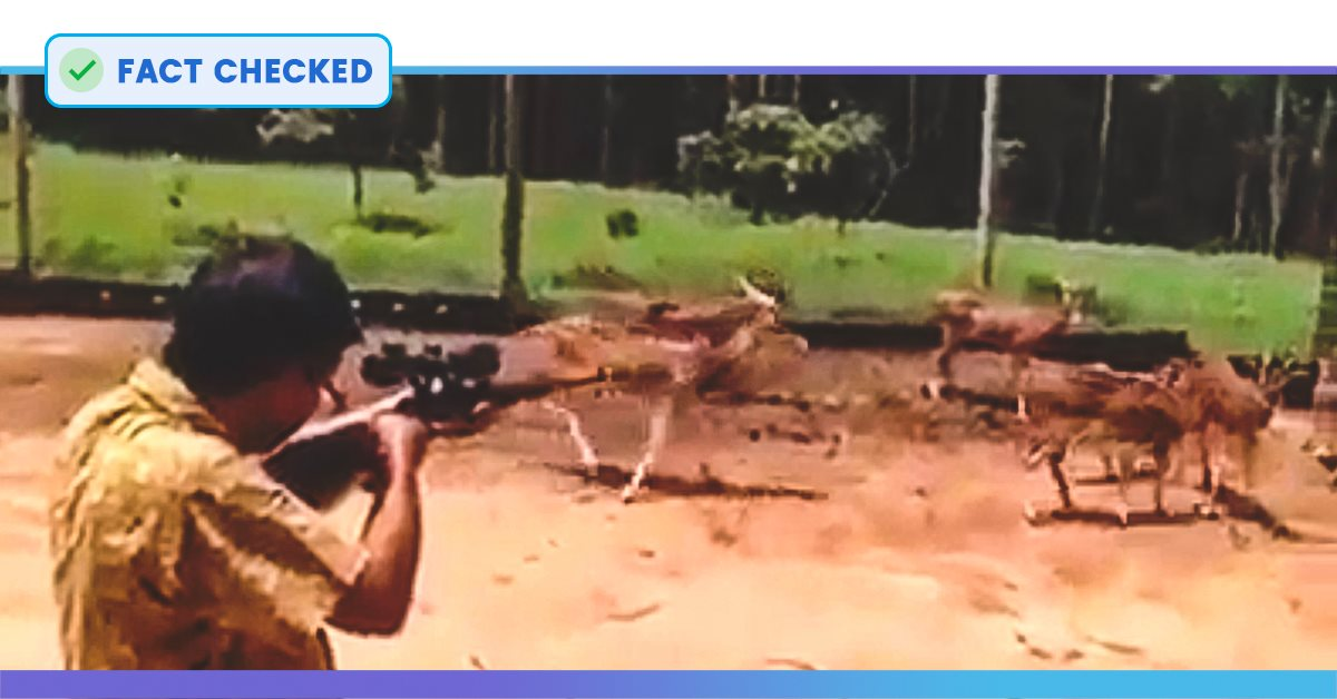 Fact Check: Viral Video Of West Bengal Forest Officer Killing Deer Is Fake