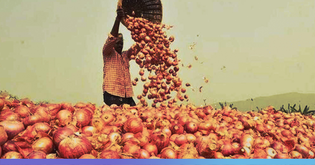 Why Onion Prices Continue To Sky Rocket Even When Farmers Are Selling At Low Cost
