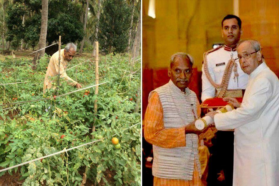 Meet Krishi Ka Rishi Who Won The Padma Shri For His Zero-Budget Natural Farming Model