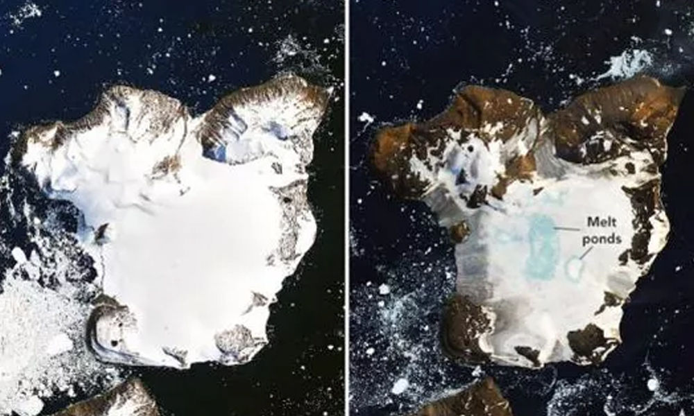 NASA Releases Images Of Dramatic Meltdown On Antarctica Due To Record High Temperatures
