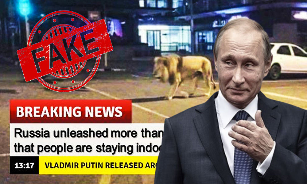 Fact Check: Did Vladimir Putin Unleash Lions To Keep Russians Indoor?