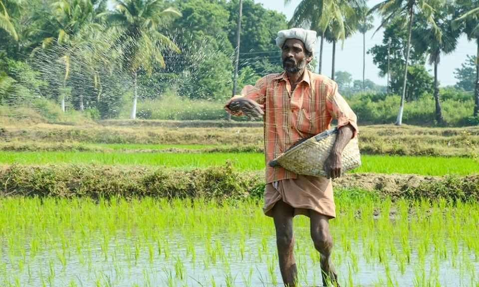 How States Are Regulating Agricultural Marketing In India AMid COVID-19