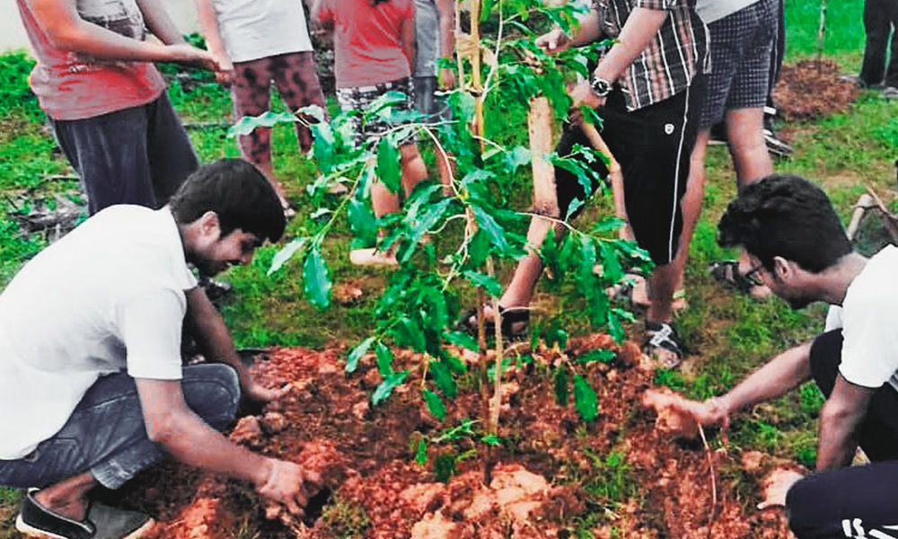 Andhra Pradesh: Group Of Eight Friends Set-Up Foundation To Plant Saplings Every Weekend, Restore Green Cover