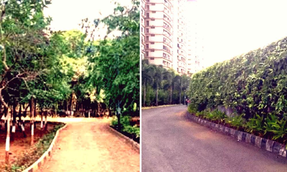 Mumbai: Dumping Site Converted Into Garden By Municipal Body