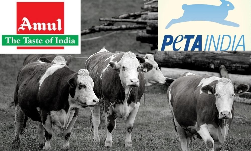 Know Why Amul And PETA Are Engaged In Twitter War