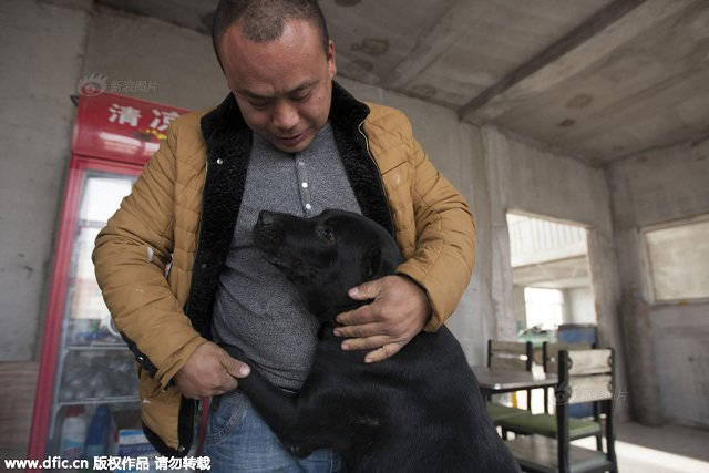 changchun_dog_lover3