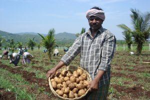 A Software Engineer Quits His Job To Establish An Organic