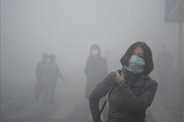 Air pollution could have killed 6 Lakh Indians