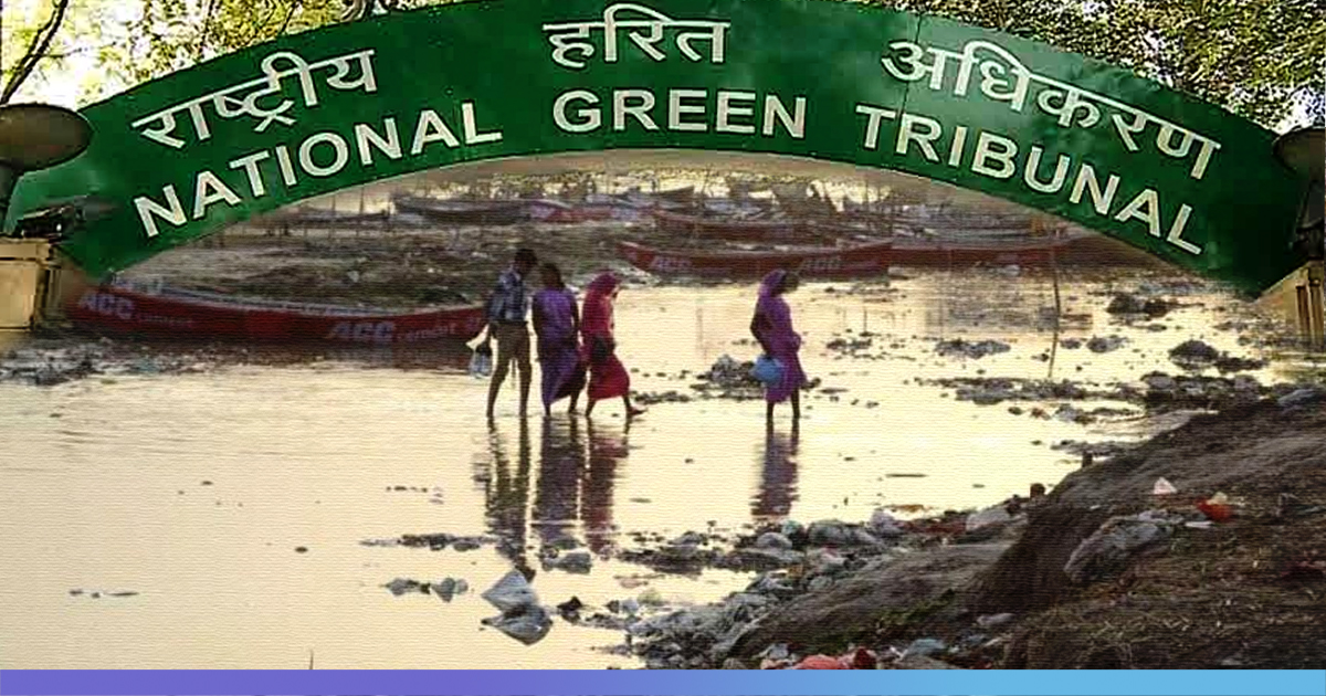 Solid Waste Accumulated In Prayagraj After Kumbh Mela May Result In An Epidemic, Says NGT